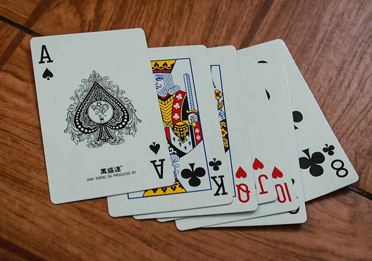 ameture rummy players